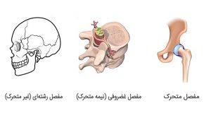 انواع مفصل